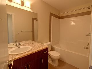 Photo 15: 3355 Orchards Link in Edmonton: Zone 53 House for sale : MLS®# E4180260