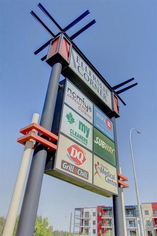 Photo 28: 265 11517 ELLERSLIE Road in Edmonton: Zone 55 Condo for sale : MLS®# E4189024