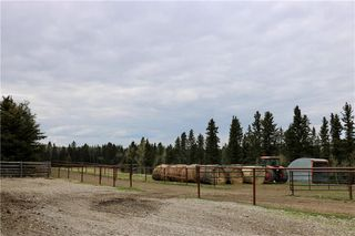 Photo 49: 33023 Range Road 43: Rural Mountain View County Detached for sale : MLS®# C4297049