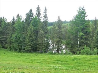 Photo 38: 33023 Range Road 43: Rural Mountain View County Detached for sale : MLS®# C4297049