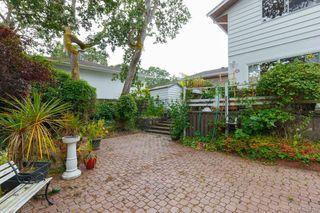 Photo 28: 3564 Redwood Ave in Oak Bay: OB Henderson Single Family Detached for sale : MLS®# 844158