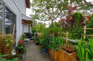 Photo 27: 3564 Redwood Ave in Oak Bay: OB Henderson Single Family Detached for sale : MLS®# 844158