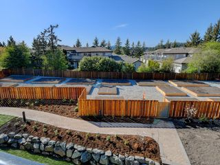 Photo 9: 207 741 Travino Lane in Saanich: SW Royal Oak Condo for sale (Saanich West)  : MLS®# 837951