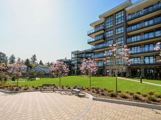 Photo 12: 207 741 Travino Lane in Saanich: SW Royal Oak Condo for sale (Saanich West)  : MLS®# 837951