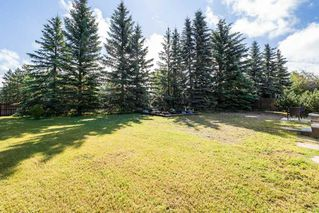 Photo 42: 10628 21 Avenue in Edmonton: Zone 16 House for sale : MLS®# E4212844