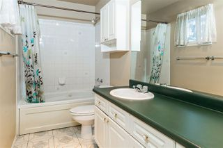 Photo 14:  in Edmonton: Zone 29 Townhouse for sale : MLS®# E4217412