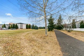 Photo 45: 3054 108 Street in Edmonton: Zone 16 Townhouse for sale : MLS®# E4220426