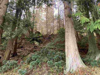 Photo 30: 60 SATER Way: Galiano Island House for sale (Islands-Van. & Gulf)  : MLS®# R2521765