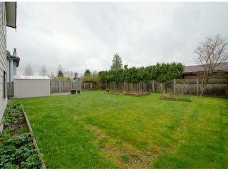 Photo 10: 15090 94TH AV in Surrey: Fleetwood Tynehead House for sale : MLS®# F1308434