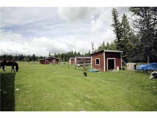 Photo 2: 2790 DOG CREEK Road in Williams Lake: Williams Lake - Rural South House for sale (Williams Lake (Zone 27))  : MLS®# N228468