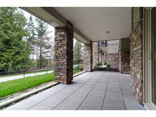 Photo 2: 107 15175 36 Avenue in Surrey: Morgan Creek Condo for sale (South Surrey White Rock)  : MLS®# F1404977