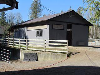 Photo 19: 25170 4 AV in Langley: Otter District House for sale : MLS®# F1441032