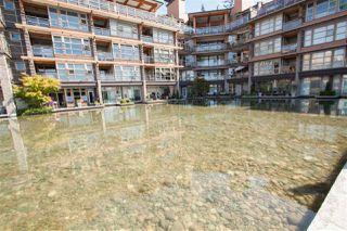 Photo 19: 313 3606 ALDERCREST DRIVE in North Vancouver: Roche Point Condo for sale : MLS®# R2096813