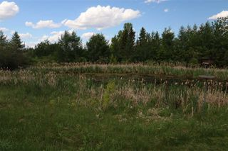 Photo 29: 266 53151 rr 222: Rural Strathcona County House for sale : MLS®# E4166051