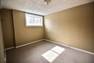 Photo 16: 8919 83 Avenue in Edmonton: Zone 18 House for sale : MLS®# E4204890