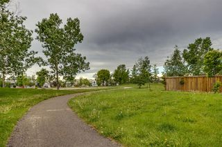 Photo 37: 38 MT ABERDEEN Grove SE in Calgary: McKenzie Lake Detached for sale : MLS®# A1028563