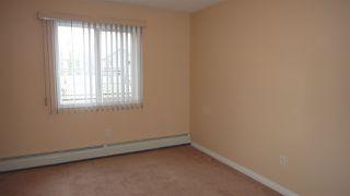 Photo 8:  in Edmonton: Zone 53 Condo for sale : MLS®# E4218207