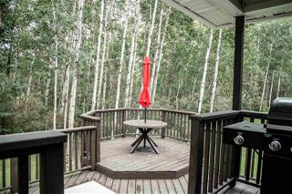 Photo 26: 46 62331 Rge Rd 411A: Rural Bonnyville M.D. House for sale : MLS®# E4218708