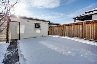 Photo 23: 90 Auburn Bay Manor SE in Calgary: Auburn Bay Detached for sale : MLS®# A1049204