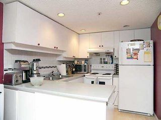 Photo 3: 1515 W 2ND Ave in Vancouver: False Creek Condo for sale (Vancouver West)  : MLS®# V588119