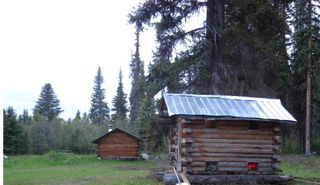 Photo 10: 143 Laidman Lake, Smithers, BC, V0L 1C0 in Smithers: Home for sale : MLS®# N234907