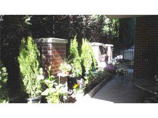 Photo 15: # 201 11 E ROYAL AV in New Westminster: Fraserview NW Condo for sale : MLS®# V1058330