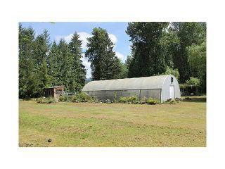 Photo 5: 22288 136TH AV in Maple Ridge: North Maple Ridge House for sale : MLS®# V1065607