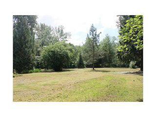 Photo 4: 22288 136TH AV in Maple Ridge: North Maple Ridge House for sale : MLS®# V1065607