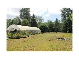 Photo 3: 22288 136TH AV in Maple Ridge: North Maple Ridge House for sale : MLS®# V1065607