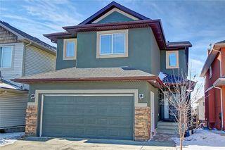 Photo 1: 81 SADDLECREST Park NE in Calgary: Saddle Ridge Detached for sale : MLS®# C4290760
