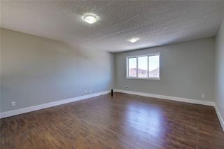 Photo 29: 81 SADDLECREST Park NE in Calgary: Saddle Ridge Detached for sale : MLS®# C4290760