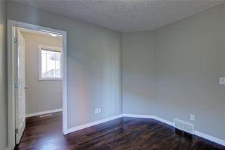 Photo 25: 81 SADDLECREST Park NE in Calgary: Saddle Ridge Detached for sale : MLS®# C4290760