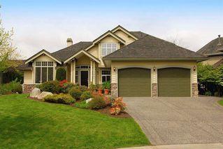 Photo 11: 15821 36 Avenue in South Surrey: Morgan Creek Home for sale ()  : MLS®# F1022837
