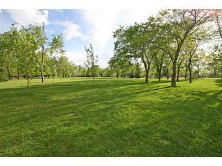 Photo 20: 451 LAKE TOPAZ Crescent SE in CALGARY: Lake Bonavista Residential Detached Single Family for sale (Calgary)  : MLS®# C3574562