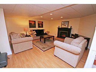 Photo 19: 451 LAKE TOPAZ Crescent SE in CALGARY: Lake Bonavista Residential Detached Single Family for sale (Calgary)  : MLS®# C3574562