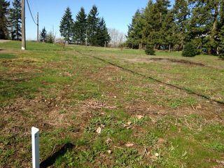Main Photo: # LT.5 23712 56TH AV in Langley: Salmon River Home for sale : MLS®# F1407651