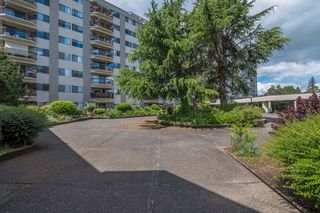 Photo 14: 211 31955 OLD YALE ROAD in Abbotsford: Abbotsford West Condo for sale : MLS®# R2291519