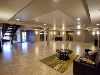 Photo 6: 215 263 MACEWAN Road in Edmonton: Zone 55 Condo for sale : MLS®# E4169376