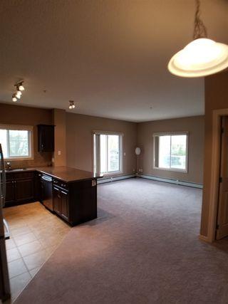 Photo 9: 215 263 MACEWAN Road in Edmonton: Zone 55 Condo for sale : MLS®# E4169376