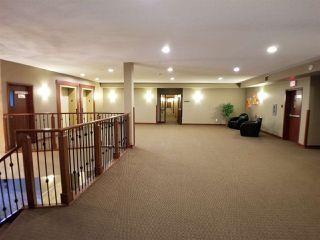 Photo 27: 215 263 MACEWAN Road in Edmonton: Zone 55 Condo for sale : MLS®# E4169376