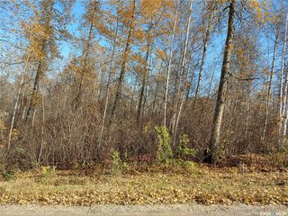 Photo 4: 137 Marean Street in Marean Lake: Lot/Land for sale : MLS®# SK788463