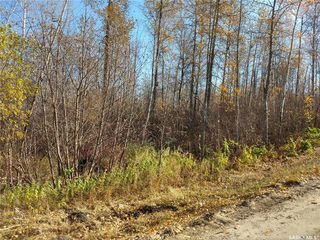 Photo 7: 137 Marean Street in Marean Lake: Lot/Land for sale : MLS®# SK788463