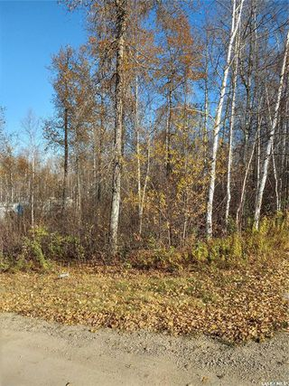 Photo 3: 137 Marean Street in Marean Lake: Lot/Land for sale : MLS®# SK788463