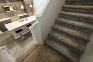 Photo 17:  in Edmonton: Zone 55 House for sale : MLS®# E4178420