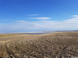 Photo 3: McLellan Acreage in Tramping Lake: Lot/Land for sale (Tramping Lake Rm No. 380)  : MLS®# SK808844