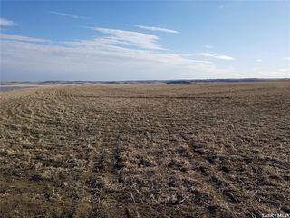 Photo 1: McLellan Acreage in Tramping Lake: Lot/Land for sale (Tramping Lake Rm No. 380)  : MLS®# SK808844
