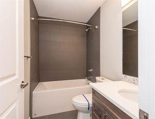 Photo 42: 12021 40 Street in Edmonton: Zone 23 House for sale : MLS®# E4221902