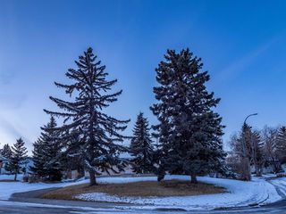 Photo 37: 1052 Thorneycroft drive NW in Calgary: Thorncliffe Detached for sale : MLS®# A1055288
