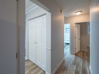 Photo 10: 1052 Thorneycroft drive NW in Calgary: Thorncliffe Detached for sale : MLS®# A1055288