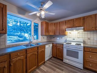 Photo 15: 1052 Thorneycroft drive NW in Calgary: Thorncliffe Detached for sale : MLS®# A1055288